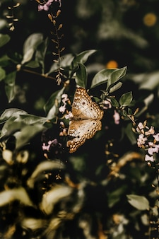 Вертикальный снимок коричневой бабочки на веточке