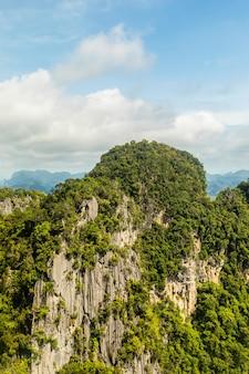 雲と青空の下で緑の植物で覆われた崖の垂直ショット