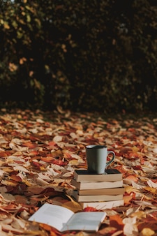 秋の紅葉で覆われた地面にいくつかの本と一杯のコーヒーの垂直ショット