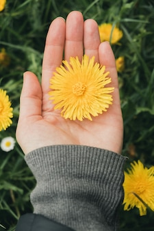 Вертикальный снимок девушки, держащей желтый одуванчик