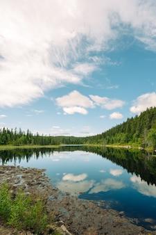 曇りの日の湖と木々の垂直ショット