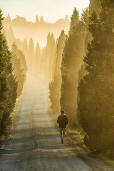 背の高い緑の木々に囲まれた通りを走っている孤独な人の垂直ショット