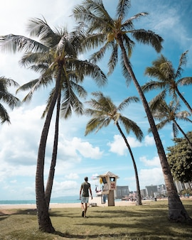 화창한 날을 즐기면서 야자수로 덮인 해변을 걷는 남자의 세로 샷