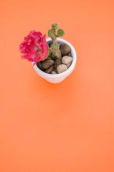 Вертикальный снимок розового цветка гвоздики в небольшом цветочном горшке на оранжевой поверхности