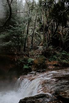 Вертикальная съемка мощного водопада в лесу, в окружении зеленых деревьев