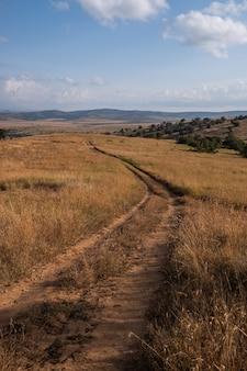 ケニア、ナイロビ、サンブルの青空の下のフィールドの真ん中にある道路の垂直ショット