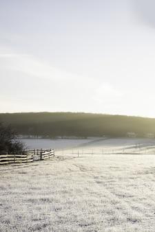 겨울에 눈과 태양의 빛으로 덮여 계곡의 세로 샷