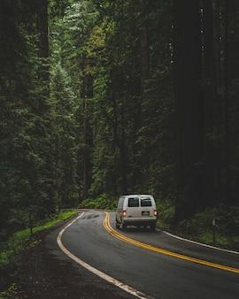 緑の背の高い木と森の真ん中に道路を運転する白いバンの垂直方向のショット