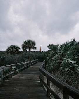 遠くに灯台がある木の真ん中にある木の小道の垂直ショット