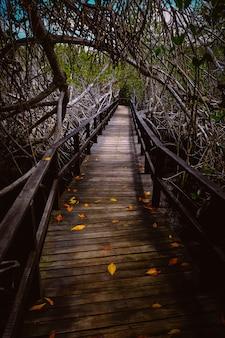 Вертикальная съемка деревянной тропы с забором в середине деревьев