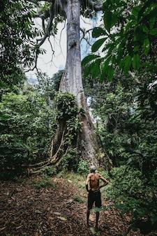 숲에서 키가 큰 나무 근처에 서있는 노인 남성의 세로 샷