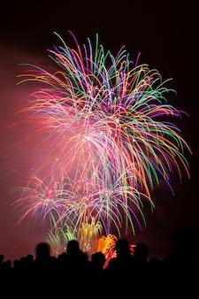 暗い夜空の下で美しいカラフルな花火の垂直ショット