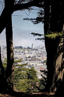 전경에 나무가 있는 샌프란시스코 카스트로 지구의 수직 샷