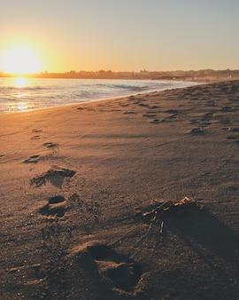 태양이 빛나는 흰색 바다에 발자국의 세로 샷