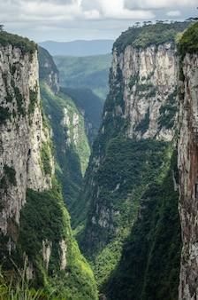 曇った青い空の下の森林に覆われた丘の垂直ショット 無料写真
