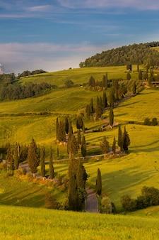 시골의 언덕으로 둘러싸인 녹색 필드의 세로 샷