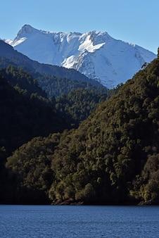 Вертикальный снимок зеленых лесов и заснеженных гор у озера