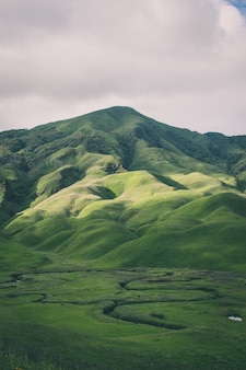 緑に覆われた山々の垂直ショット-モバイルに最適