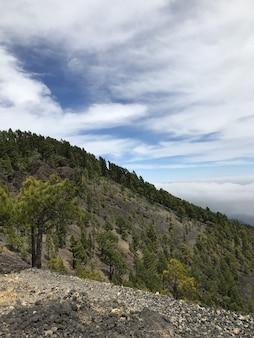 雲と青空の下で緑の木々で覆われた山の垂直ショット