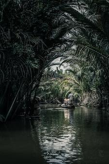 ヤシの木の反射と湖の真ん中にボートに乗っている人の垂直方向のショット