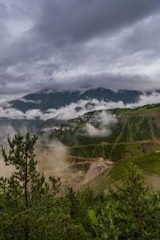 美しい曇り空の下で草で覆われた野原と山々の垂直ショット