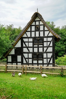 ドイツ、メッヒャーニッヒのkommern野外博物館の垂直ショット