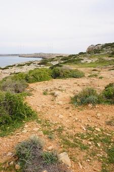 푸른 하늘 아래 토양과 잔디로 덮여 호수 해안의 세로 샷