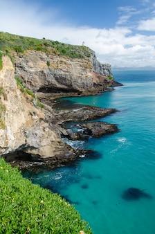 Вертикальный снимок туннельного пляжа в данидине, новая зеландия