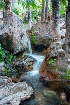 一連の小さな滝で水が転がり落ちる垂直ショット