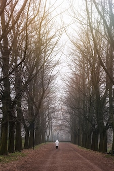 Vertical shot of a person on the walkway in the park full of naked trees
