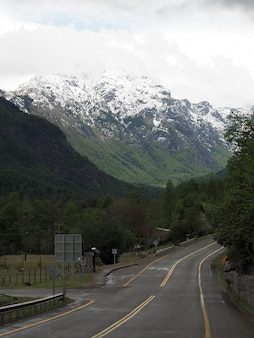 Vertical shot of a road and tree-covered mountains with snowy peaks