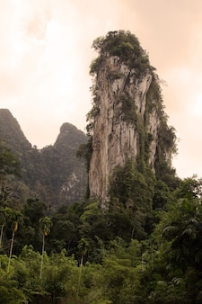 Vertical shot of a rock formation in the forest in the kao sok national park, thailand