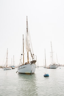 Vertical shot of a sailboat in newport harbor, california