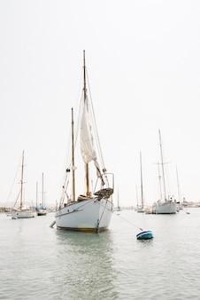 Colpo verticale di una barca a vela nel porto di newport, california
