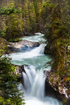 Vertical shot of a small river in the johnston canyon massive