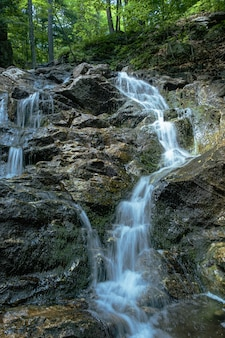 Vertical shot of a small waterfalls in the woods