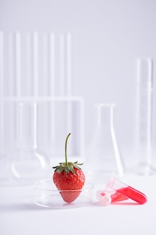 Vertical shot of a strawberry in a glass dish and two plastic vials with red liquid at a lab