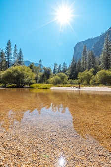 Vertical shot of the sun shining over the water and trees of the yosemite national park