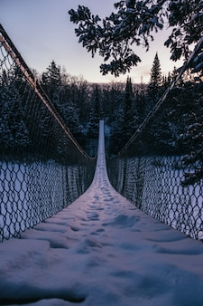 Vertical shot of a suspension bridge heading to the beautiful fir tree forest covered with snow