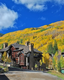Vertical shot of a tall building with beautiful autumn trees in the background in colorado