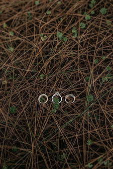 Vertical shot of three rings put on a surface of  small narrow wooden branches