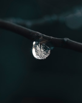 Vertical shot of a water droplet freezing