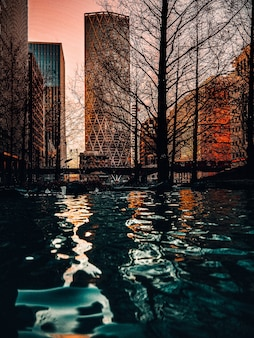 Vertical  shot of a water surface on skyscrapers