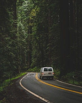 Vertical shot of a white van driving on the road in the middle of a forest with green tall trees
