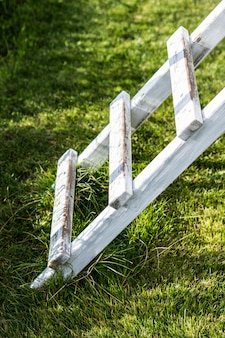 Vertical shot of a white wooden ladder on the grass in the park