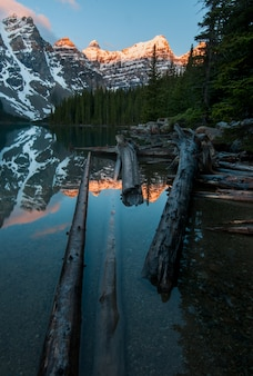 Vertical shot of the wood pieces in the lake with reflections of the mountains in the  moraine lake