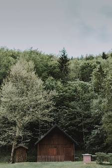 Vertical shot of a wooden barn surrounded by trees under a cloudy sky at daytime
