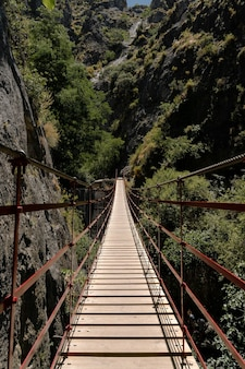 Vertical shot of a wooden pathway in the mountains