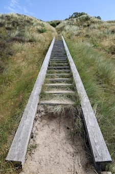 Vertical shot of wooden stairs in grassland