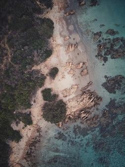 Vista dall'alto verticale di una spiaggia rocciosa con alberi